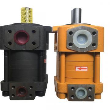 QT2323-6.3-6.3MN-S1162-A Heißer verkauf pumpe