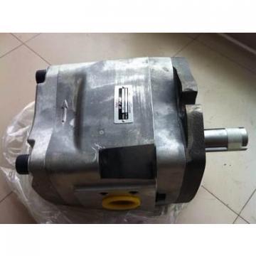 QT63-80-A Hydraulische Pumpe