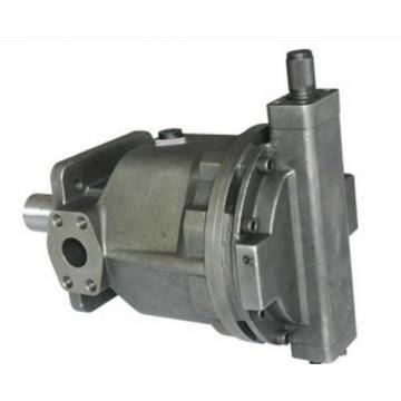 PVD-2B-40P-16G5-4702F Hydraulische Pumpe